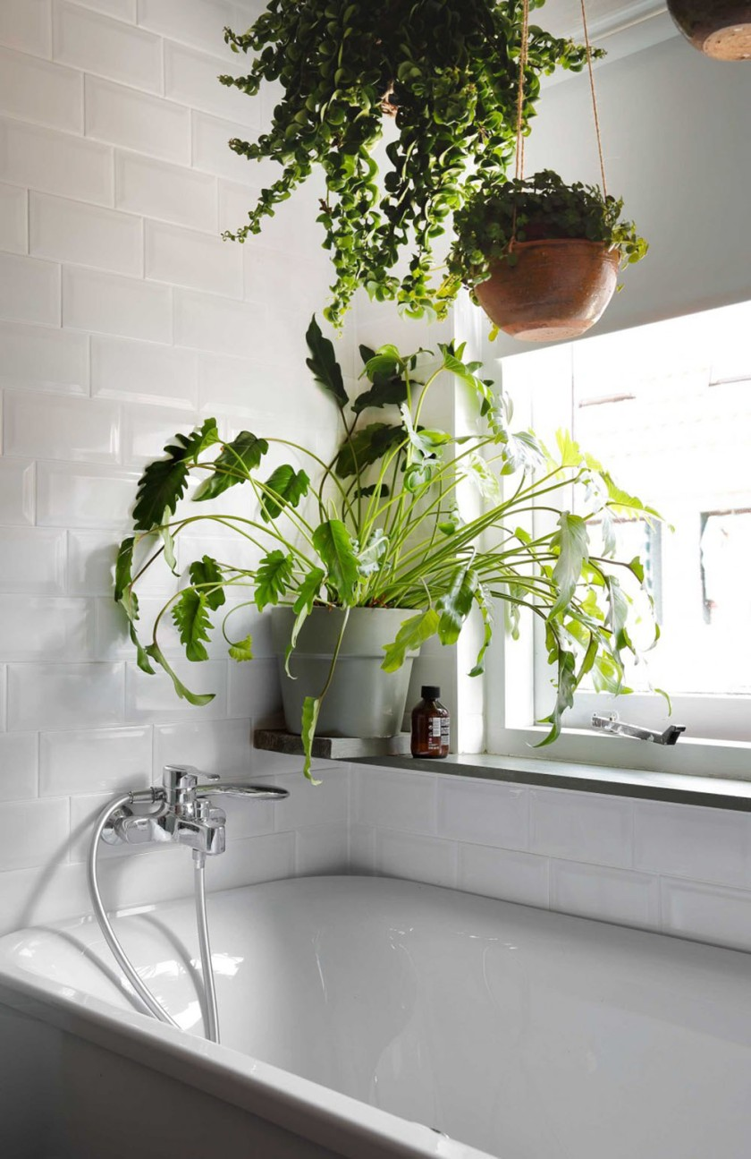 12-badkamer-planten
